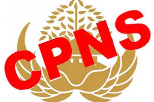 PENGUMUMAN SELEKSI ADMINISTRASI PENGADAAN CPNS DI LINGKUNGAN PEMERINTAH KABUPATEN SUMBAWA TH 2019